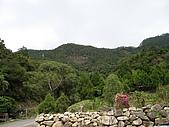 20061203台中縣東卯山之旅:東卯山03.JPG