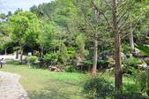 20100314台中縣太平市酒桶山、仙女瀑布、蝙蝠洞之旅:DSC_0023.JPG