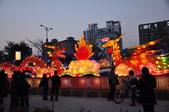 20130307-2013年新竹縣燈會之旅:DSC_5290.JPG