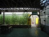 20091003新竹縣北埔鄉金勇&綠世界一日遊:IMG_0365.JPG
