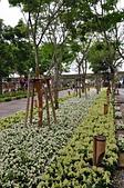 20190404臺中世界花卉博覽會(外埔園區):DSC_8862.JPG