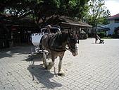 20080927苗栗縣飛牛牧場一日遊:IMG_0210.JPG