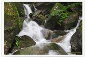 20120531-0601馬武督探索森林&拉拉山二日遊:DSC_2073.jpg