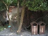 20091024-25二日遊Day2-4台南市樹屋&德記洋行:IMG_1075.JPG