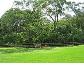 20080927苗栗縣飛牛牧場一日遊:IMG_0226.JPG