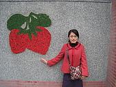 20090126苗栗縣大湖酒莊&耕陶源一日遊:IMG_0427.JPG