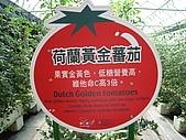 20091003新竹縣北埔鄉金勇&綠世界一日遊:IMG_0366.JPG