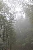 20100403南投縣竹山鎮天梯、太極峽谷一日遊:DSC_1377.JPG