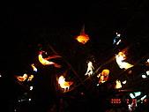 20050228豐原迪士尼花燈之旅:DSC05132.JPG
