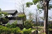 20100314台中縣太平市酒桶山、仙女瀑布、蝙蝠洞之旅:DSC_0017.JPG