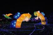2015台灣燈會在台中-烏日高鐵:DSC_0118.JPG