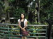 20081012台中市植物園參觀:IMG_0376.JPG