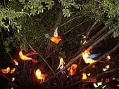 20050228豐原迪士尼花燈之旅:DSC05133.JPG