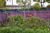 20181231臺中世界花卉博覽會(葫蘆墩公園):DSC_7878.JPG