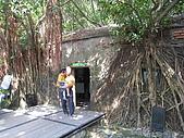 20091024-25二日遊Day2-4台南市樹屋&德記洋行:IMG_1077.JPG