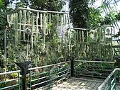 20081012台中市植物園參觀:IMG_0378.JPG