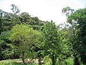 20090725新竹市高峰植物園參觀:IMG_1544.JPG