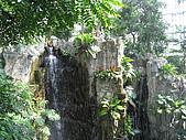 20081012台中市植物園參觀:IMG_0379.JPG