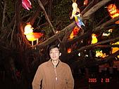 20050228豐原迪士尼花燈之旅:DSC05134.JPG