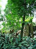 20081012台中市植物園參觀:IMG_0385.JPG