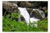 20120531-0601馬武督探索森林&拉拉山二日遊:DSC_2027.jpg