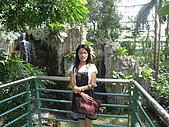 20081012台中市植物園參觀:IMG_0380.JPG