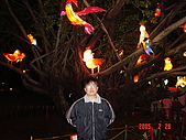 20050228豐原迪士尼花燈之旅:DSC05135.JPG
