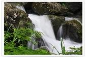 20120531-0601馬武督探索森林&拉拉山二日遊:DSC_2029.jpg