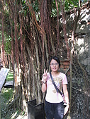 20091024-25二日遊Day2-4台南市樹屋&德記洋行:IMG_1082.JPG