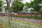 20190404臺中世界花卉博覽會(外埔園區):DSC_8860.JPG
