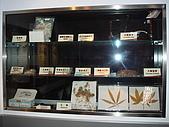 20070302台北縣法務部調查局參觀:DSC00600.JPG