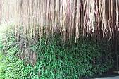 20091219南投縣埔里鎮台一生態休閒農場之旅:DSC_0015.JPG