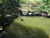 20091212新竹縣新埔鎮南園參觀:IMG_1002.JPG