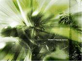 視覺衝擊:1704325038.jpg