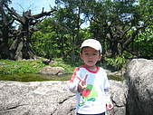 20090428木柵動物園親子之旅:IMG_8277.JPG