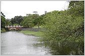 2009-02-17-南港公園:IMGP1801.JPG