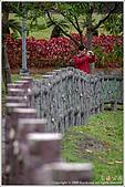 2009-02-17-南港公園:IMGP1807.JPG