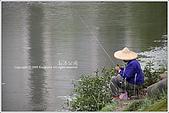 2009-02-17-南港公園:IMGP1808.JPG
