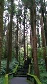 杉中 綠步道:P_20170716_131339_SRES.jpg