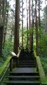杉中 綠步道:P_20170716_131311_SRES.jpg