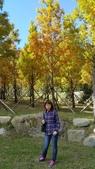 賞楓的另一個選擇;杉林溪 賞水杉:20161119_112453.jpg