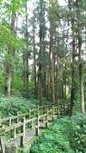 杉中 綠步道:P_20170716_131543_vHDR_On.jpg
