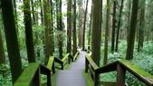杉中 綠步道:P_20170716_131239_SRES.jpg