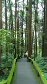 杉中 綠步道:P_20170716_131200_SRES.jpg