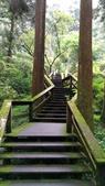 杉中 綠步道:P_20170716_131220_SRES.jpg