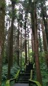 杉中 綠步道:P_20170716_131345_SRES.jpg