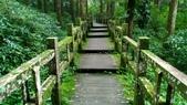 杉中 綠步道:P_20170716_131613_SRES.jpg