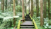 杉中 綠步道:P_20170716_131401_SRES.jpg