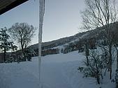 970127日本志賀滑雪五日(Joe):SANY2500.JPG