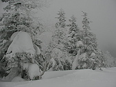 970127日本志賀滑雪五日(morries):SANY0109.JPG